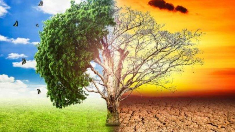 Η Γη κινδυνεύει να μπει σε μια αμετάκλητη φάση «θερμοκηπίου ... 279d639db7a
